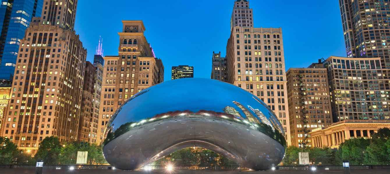 Chicago cougar
