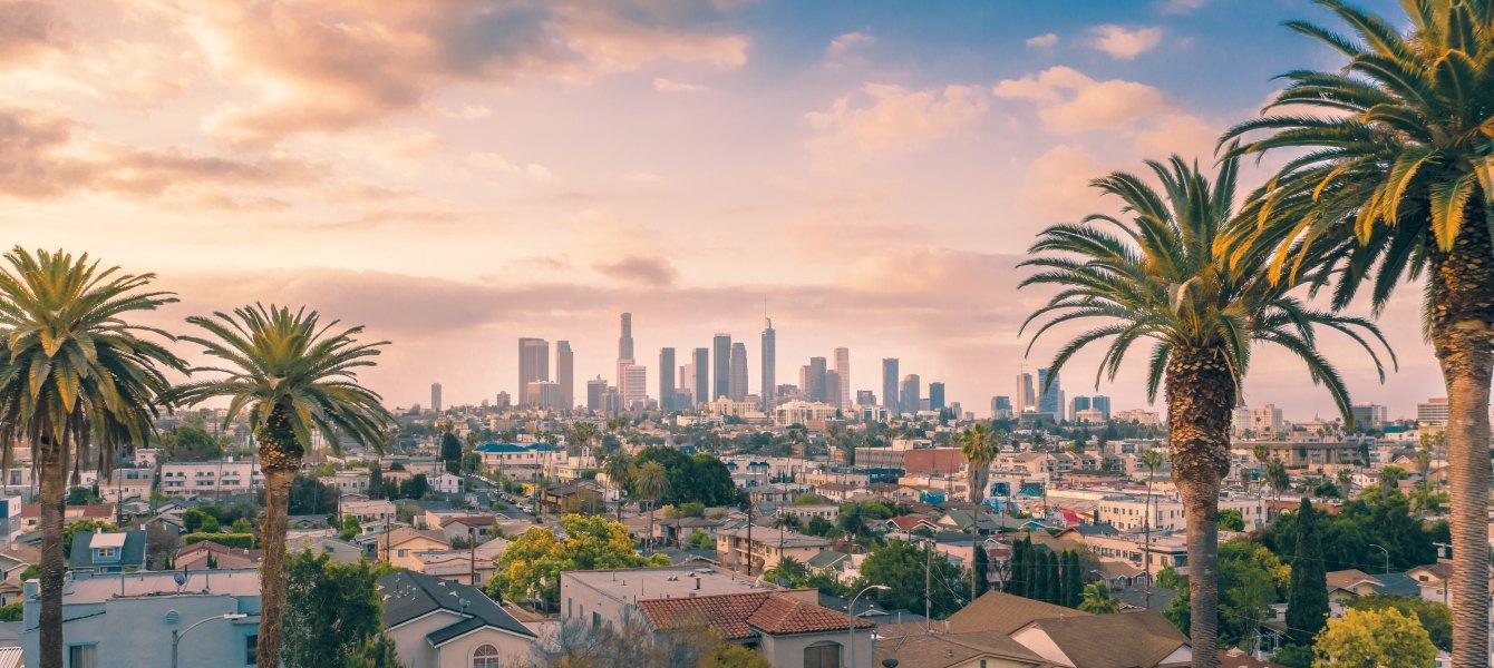 Los Angeles cougar